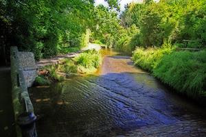 river lacock 0808.jpg